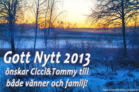 Gott Nytt 2013!