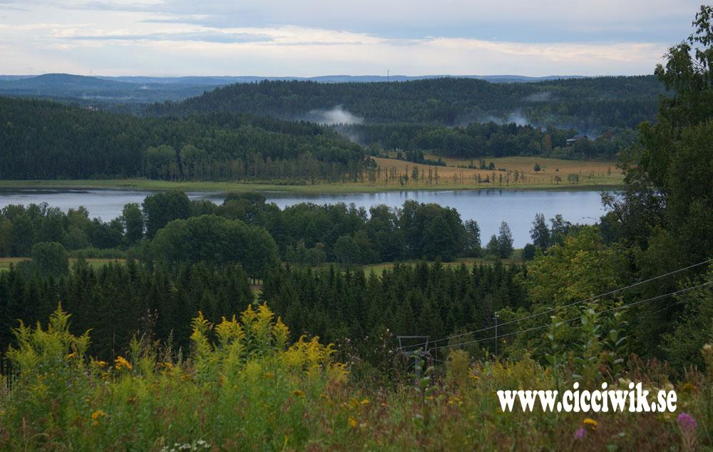 Utsikt över Smårissjön från Dömlebacken.